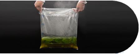Stomacher sterile lab blender homogenizer bags